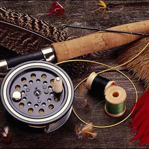 Охотничьи и рыболовные магазины Тайги